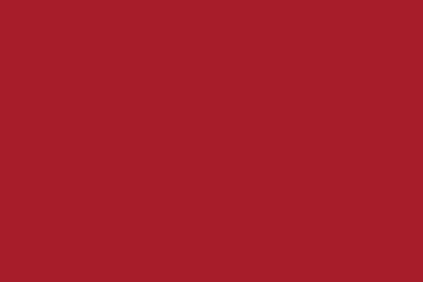 Lackierung in verschiedenen Farben mit matter oder glänzender Ausführung